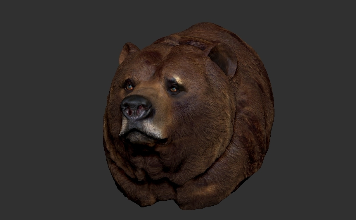 3d printed grizzly bear bust by kallabow pinshape