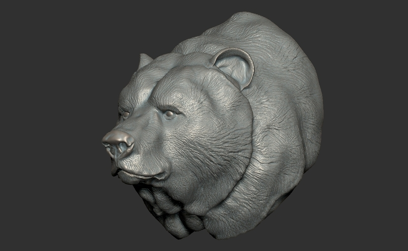 Grizzly bear bust 3D Print 97401