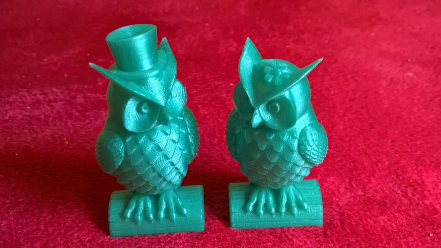 His_and_Her_Owls 3D Print 97684