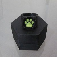 Small Chat Noir's Ring 3D Printing 97692