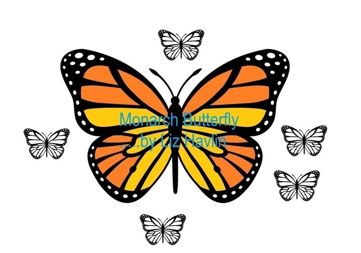 Monarch Butterfly 3D Print 97818