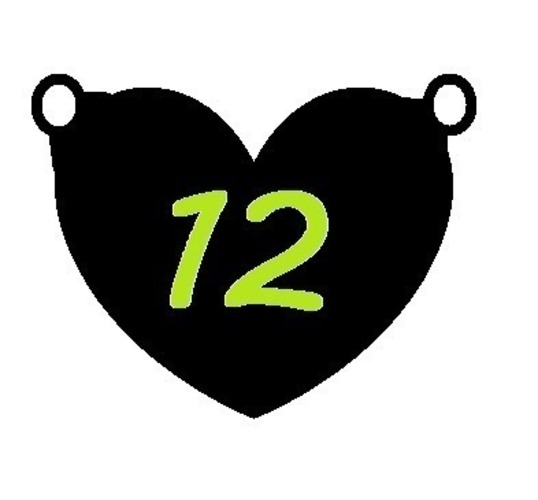 Seahawks Girl - I heart 12  3D Print 97866