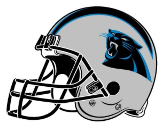 South Carolina Panthers Helmet  3D Print 97875