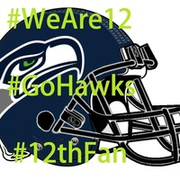Small Seahawks vs Panthers - Seattle Seahawks Helmet Art 3D Printing 97876