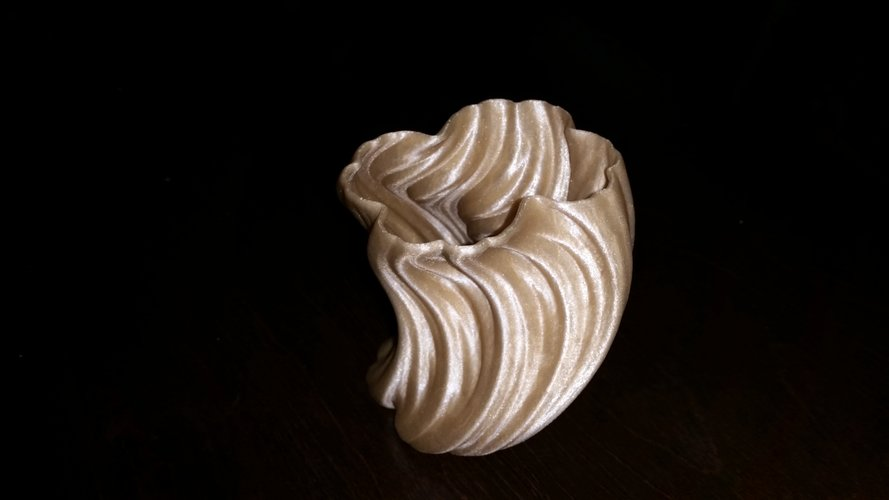 Julia Vase #004 - Bloom 3D Print 10522
