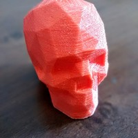 Small Low Poly Skull 3D Printing 1102