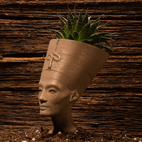 Small Nefertiti Bust [Hollow] 3D Printing 11311