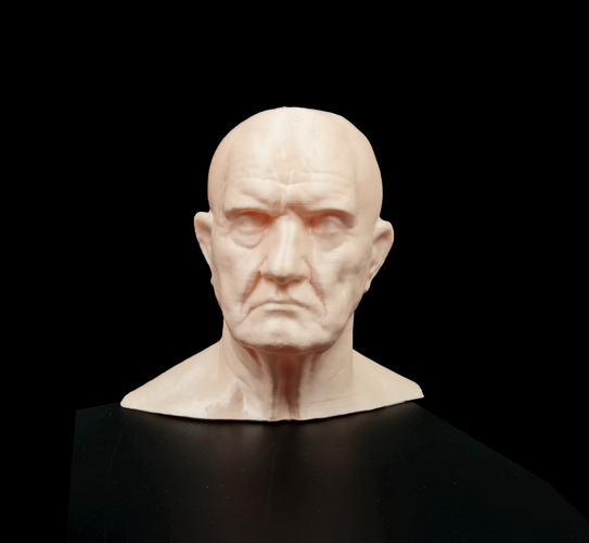 Marble Bust of a Man 3D Print 11685