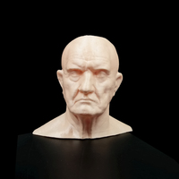 Small Marble Bust of a Man 3D Printing 11685