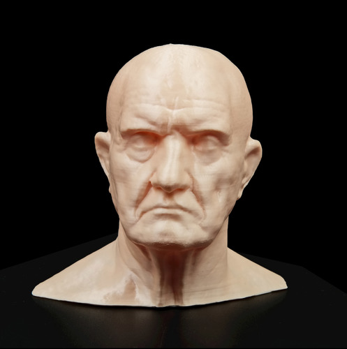 Marble Bust of a Man 3D Print 11686