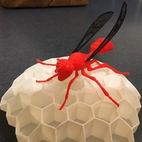 Small Big Wasp 3D Printing 11702