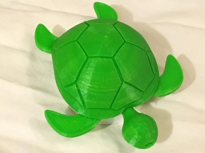 Turtle with moving legs 3D Print 11707