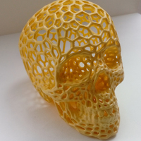 Small Skull lamps - Voronoi Style 3D Printing 11765