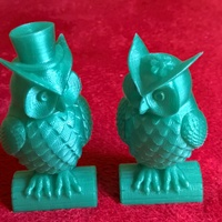 Small His_and_Her_Owls 3D Printing 11992