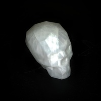 Small Low Poly Skull 3D Printing 12360