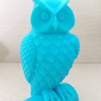 Small Owl 3D Printing 12422