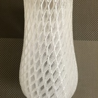 Small Spiral Vase 3D Printing 12802