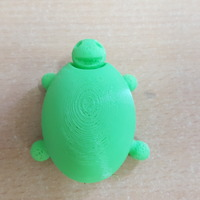 Small Turtle 3D Printing 14298