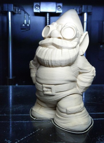 Color MakerBot Gnome 3D Print 14326