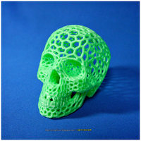 Small Skull lamps - Voronoi Style 3D Printing 14461