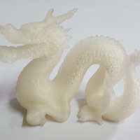 Small Hi-Res Standford Dragon 3D Printing 15558