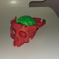 Small Boneheads: Skull Box w/ Brain - via 3DKitbash.com 3D Printing 15882