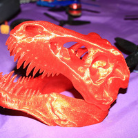 Small The T-Rex Skull 3D Printing 16776