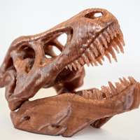 Small The T-Rex Skull 3D Printing 16850