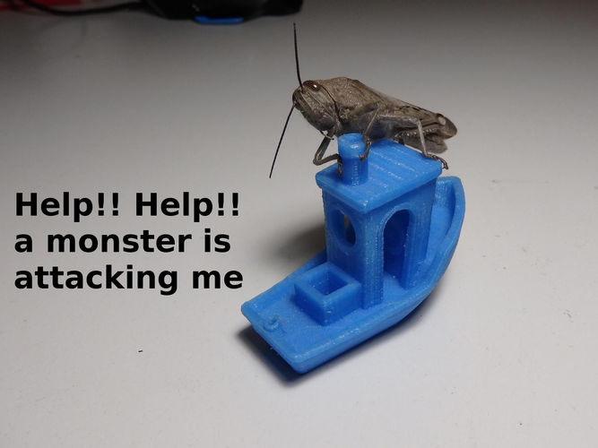 #3DBenchy - The jolly 3D printing torture-test 3D Print 16976