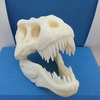 Small The T-Rex Skull 3D Printing 17037