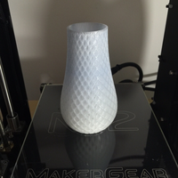 Small Spiral Vase 3D Printing 1705