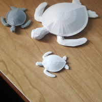 Small Sea Turtle Keychain 3D Printing 17118