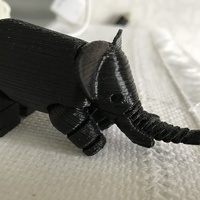 Small Elephant 3D Printing 17155