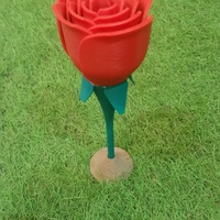 Small Rose two-piece 3D Printing 17190