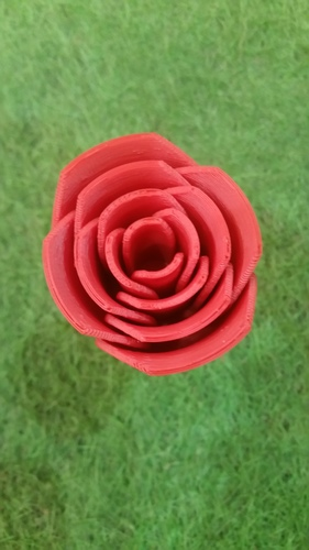 Rose two-piece 3D Print 17191