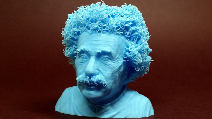 Hairy Einstein 3D Print 17835