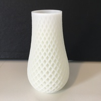 Small Spiral Vase 3D Printing 18568