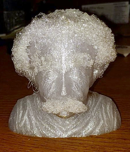 Hairy Einstein 3D Print 18597