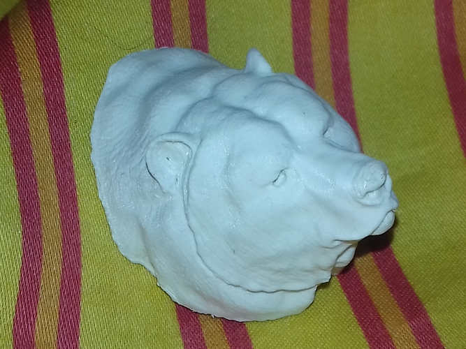 Grizzly bear bust 3D Print 18966