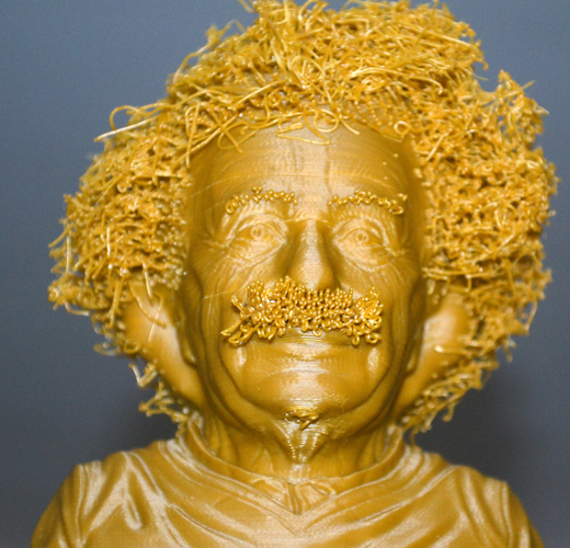Hairy Einstein 3D Print 19033