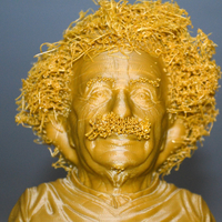 Small Hairy Einstein 3D Printing 19033