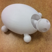 Small Turtle 3D Printing 19897