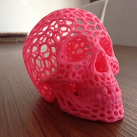 Small Skull lamps - Voronoi Style 3D Printing 20675