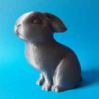 Small Bunny 3D Printing 20928
