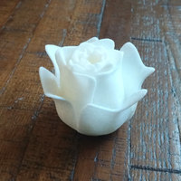 Small Open Rose 3D Printing 21107