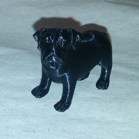 Small Dog scan Chien 3D Printing 21110