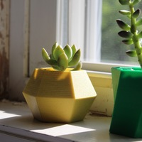 Small Hexagon Planter 3D Printing 21235