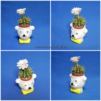 Small BEAR BRAVO Potted plants 3D Printing 21265