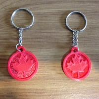 Small 3D printed key chain-Maple leaf 3D Printing 21750