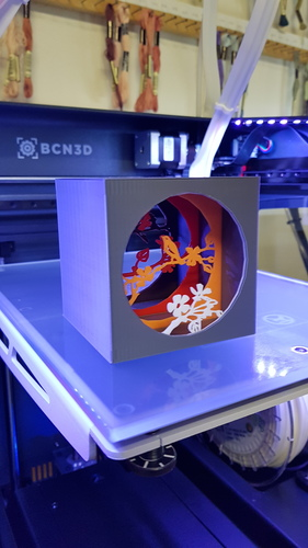 Shadow box with bird 3D Print 21854